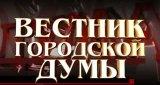 Вестник городской думы (17 февраля 2013)