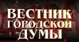 Вестник городской думы (3 марта 2013)