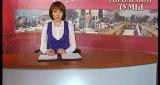 Вестник городской думы (24 марта 2013)